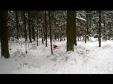 зимний кросс по лесу/26.02.2016 г./Викинг отрывается...