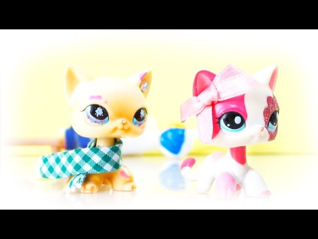 ♥ Littlest Pet Shop: L♡VE ID☆L!! (Episode14) ♥