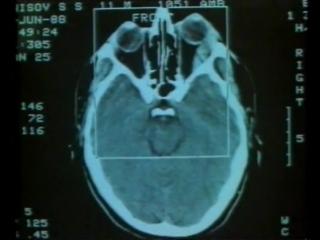 Анатомия и физиология человека 1. Общее знакомство с организмом человека