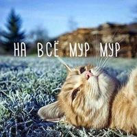 my_littleeeeeee