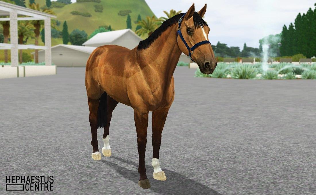 Регистрация лошадей в RHF 2 - Страница 3 0hm-L6F34H8