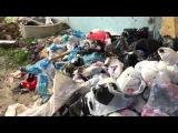 Невиданное свинство в Махачкале