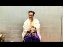 Tsuru no Sugomori - Antonio Olías