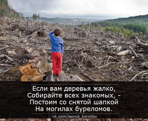 Андреев Леонид - Самсон в оковах - Страница 24