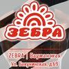 Зебра Бауманская