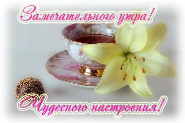https://pp.vk.me/c630420/v630420746/2199c/SdQf4dYatlE.jpg