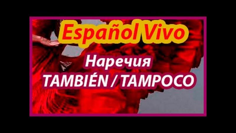 Испанский язык. TAMBIÉNTAMPOCO.