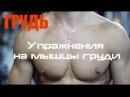 2 выпуск Pro Спорт Упражнения для груди | Красивая грудь | Большие грудные мышцы