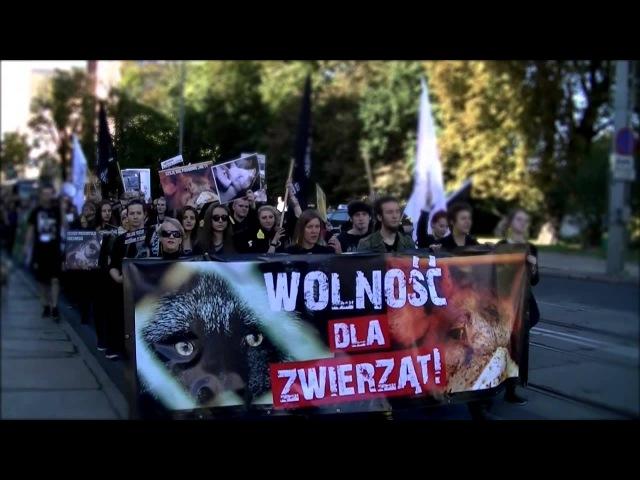 Ogólnopolska Demonstracja 269 relacja