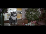 Кошачья сказка к Рождеству)) --Sainsbury's OFFICIAL Christmas Advert 2015 – Mog's Christmas Calamity