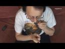 Урок 3 10 Первые удары и дыхание . Видео курс Русский варган. Основы