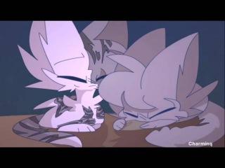 Коты Воители. Голубка и Искра - Две сестры...