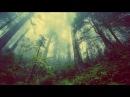 Evergreen Refuge - Earthborn (Full Album)