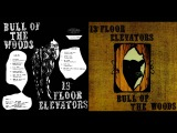 Audiophile Edition 13th Floor Elevators - Bull of the Woods (1969)