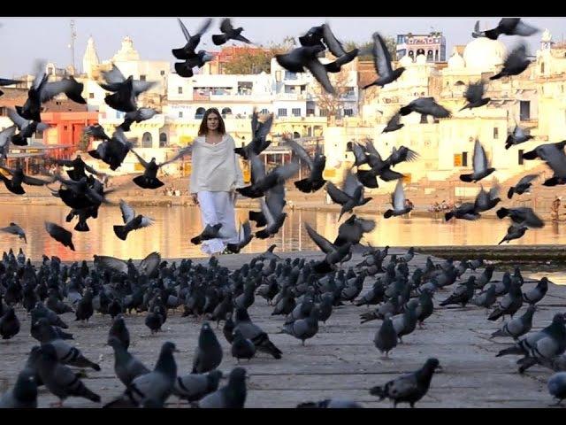 Journey to India - The Bhaktas - Ananda Purnima (Feat. Jai Uttal)