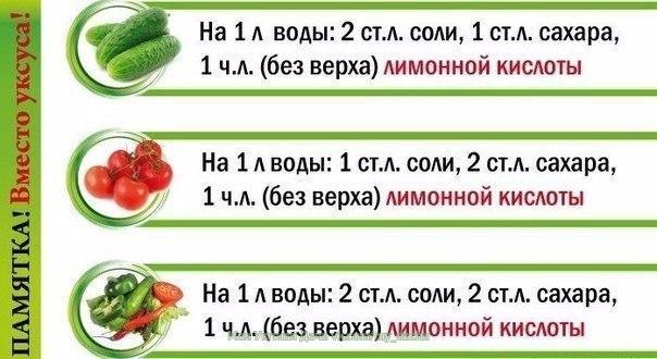 https://pp.userapi.com/c630423/v630423194/36e53/7PgiYcnE3OQ.jpg