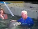 Дельфин и человек. Кто умнее?