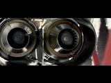 Jetman Dubai - Young Feathers 4K