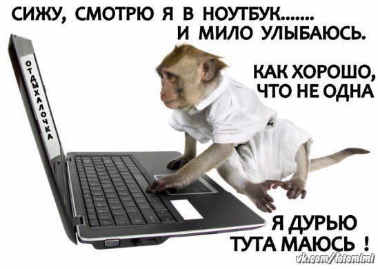 https://pp.vk.me/c630424/v630424117/29395/LaZTlZI9GUU.jpg