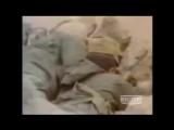 Песни Афгана. Валерий Петряев - Наша душа