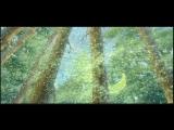 Проявление глубокой женственности_Ala Naturalis (Олень,Нимфа и Вулкан) -music Yanni - Prelude  N