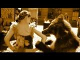 Bear's Kiss (Медвежий Поцелуй)