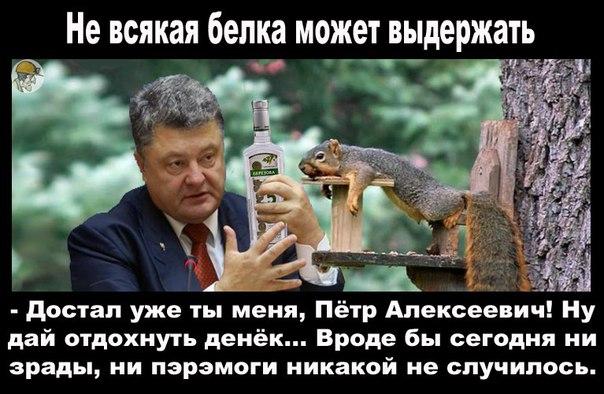 http://cs630425.vk.me/v630425763/122d3/2v4dwh0RmlY.jpg