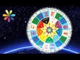 Славянский астропрогноз от мольфарки Магдалены + суб. – Все буде добре. Выпуск 745 от 25.01.16