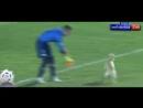 В Венесуэле собака прервала футбольный матч » Триникси