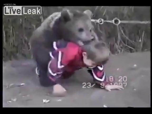 Хабиб Нурмагомедов борется с медведем