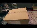 Thon en boîte : la saga Petit Navire