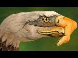 The Eagles- DESPERADO-HD