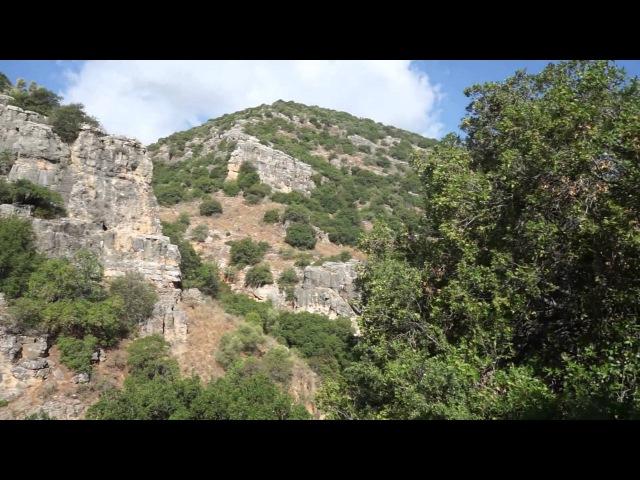 ИЗРАИЛЬ: ШВИЛЬ ИСРАЭЛЬ - 3 От горы Мерон до Тивериадского озера