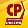СПРАВЕДЛИВАЯ РОССИЯ в Пермском крае