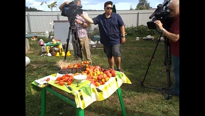 Коротко со съёмок помидоров Помидома для ТВЦ