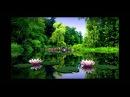 Самая красивая природа Смотрите супер фото природы