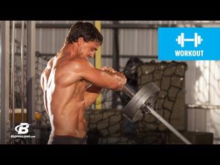 Shoulder Shred Workout   MFT28: Greg Plitt's 4-Week Military Fitness Training Program