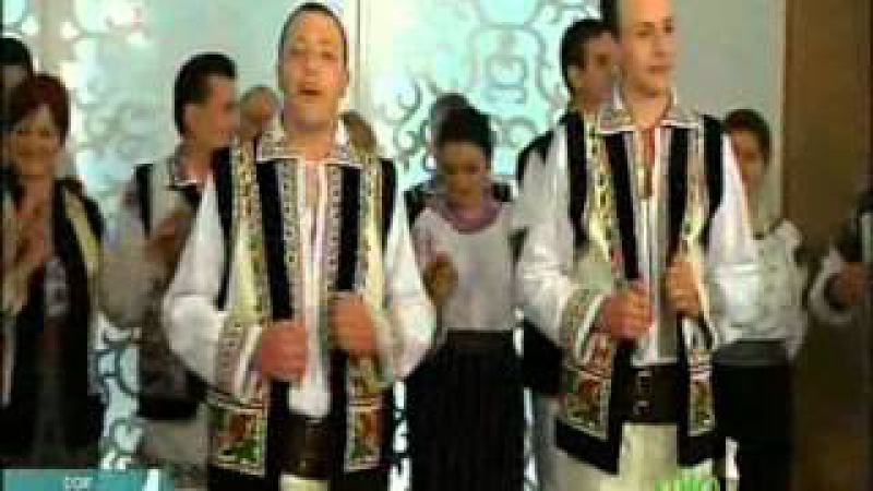 ION SI VEACESLAV BINZARI - Azi la zi de sarbatoare