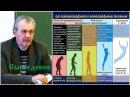 Шемшук В А Сыроедение человека как результат эволюции