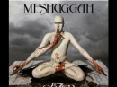 Meshuggah - Dancers To A Discordant System
