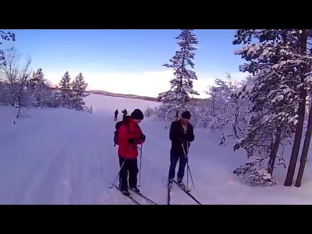 лыжная прогулка по марафонке 23км 14.02.2016