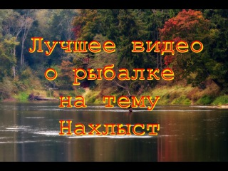 Лучшее видео о рыбалке на тему нахлыст/The best videos on the subject of fishing flyfishing