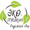 ЭКО-Пушкин - Раздельный сбор в Пушкине