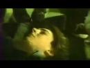 Гомункулус. 1988