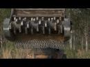 Terex ASV PT 100 Forestry with ASV Mulcher by Fecon