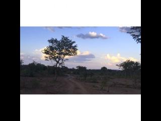 """Моя #Africa #Zimbabwe  Несколько лет назад я сделала в своём what's app-профиле учётную запись: """" Дорога - мой Дом"""". Возможно, поэтому в…"""