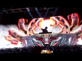 Excision – The Paradox