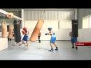 Талыши онлайн - Lənkəranlı boksçular paytaxtda təlim-məşq toplanışındadır
