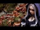CP/FairyLand [Mandrak Moors Dolls] feeple60 : Lunnula Moonbeams Preview (FHD)