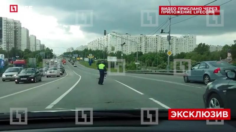 Сотрудник ДПС перекрыл движение на Алтуфьевском шоссе ради уток.
